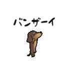 激しく尻尾をふるイヌ4(個別スタンプ:09)