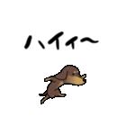 激しく尻尾をふるイヌ4(個別スタンプ:10)