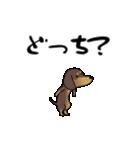 激しく尻尾をふるイヌ4(個別スタンプ:11)