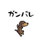 激しく尻尾をふるイヌ4(個別スタンプ:12)