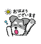 Cute! シュナウザースタンプ(個別スタンプ:02)