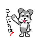 Cute! シュナウザースタンプ(個別スタンプ:03)