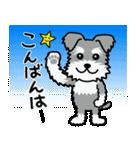 Cute! シュナウザースタンプ(個別スタンプ:04)