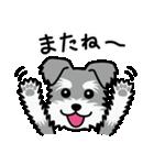Cute! シュナウザースタンプ(個別スタンプ:05)