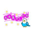 音符で挨拶 ちょこちょこインコ(春)(個別スタンプ:06)