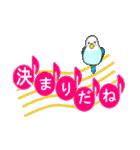 音符で挨拶 ちょこちょこインコ(春)(個別スタンプ:38)
