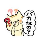 猫便り12 〜バカスペシャル〜(個別スタンプ:14)