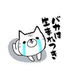 猫便り12 〜バカスペシャル〜(個別スタンプ:36)