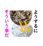 【実写】牛丼(個別スタンプ:03)