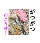 【実写】牛丼(個別スタンプ:04)