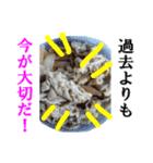 【実写】牛丼(個別スタンプ:11)