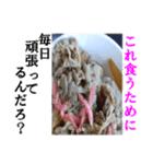 【実写】牛丼(個別スタンプ:14)