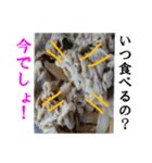 【実写】牛丼(個別スタンプ:17)