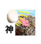 【実写】牛丼(個別スタンプ:20)
