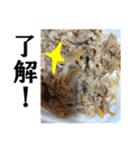 【実写】牛丼(個別スタンプ:27)