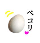 【実写】牛丼(個別スタンプ:34)