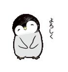 おはようからおやすみまであいさつペンギン(個別スタンプ:24)