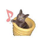 チョコーねこ(個別スタンプ:40)