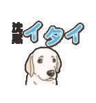わんこ日和ラブラドールの仔犬 5(個別スタンプ:04)