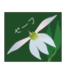 花メルヘン(個別スタンプ:23)