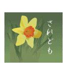 花メルヘン(個別スタンプ:27)