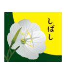 花メルヘン(個別スタンプ:33)