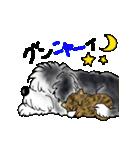 にゃんこ時々わんこ(個別スタンプ:02)