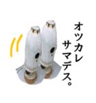 【実写】ガスボンベ(個別スタンプ:11)