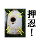 【実写】ガスボンベ(個別スタンプ:12)