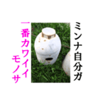 【実写】ガスボンベ(個別スタンプ:13)