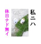 【実写】ガスボンベ(個別スタンプ:16)