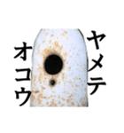 【実写】ガスボンベ(個別スタンプ:17)