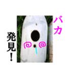 【実写】ガスボンベ(個別スタンプ:19)