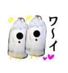 【実写】ガスボンベ(個別スタンプ:20)