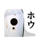 【実写】ガスボンベ(個別スタンプ:22)