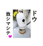 【実写】ガスボンベ(個別スタンプ:27)