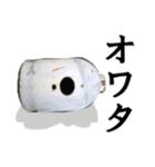 【実写】ガスボンベ(個別スタンプ:33)