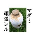 【実写】ガスボンベ(個別スタンプ:35)