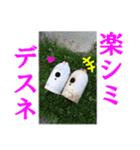 【実写】ガスボンベ(個別スタンプ:37)