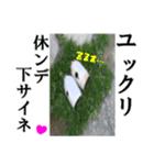 【実写】ガスボンベ(個別スタンプ:40)