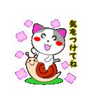 4匹の子猫 第3弾 夏【5~8月】(個別スタンプ:04)