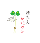 カイワレ大根だじゃれ(個別スタンプ:5)