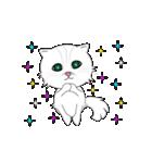 動く!可愛い子猫ちゃん