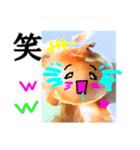 【実写】泣きのタマネギ(個別スタンプ:03)