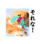 【実写】泣きのタマネギ(個別スタンプ:06)
