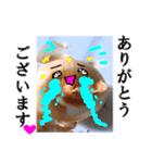 【実写】泣きのタマネギ(個別スタンプ:10)