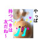 【実写】泣きのタマネギ(個別スタンプ:18)