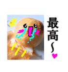 【実写】泣きのタマネギ(個別スタンプ:19)