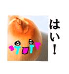 【実写】泣きのタマネギ(個別スタンプ:27)