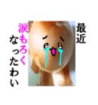 【実写】泣きのタマネギ(個別スタンプ:28)